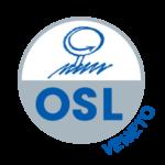 Logo OSL S.r.l. area Veneto - programmi gestione produzione e logistica, collaborazione tecnologia aziende, fornitura soluzioni informatiche aziende meccaniche